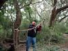 Joe of the Jungle (BunnyHugger) Tags: charleston dorothybkearnspark family letterboxing southcarolina wandoriver
