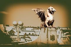Golden dragon (Paweł Szczepański) Tags: ljubljana slovenia si extraordinarilyimpressive trolled sonyflickraward legacy daarklands shockofthenew sincity