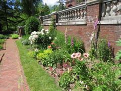 Back Garden (pirate johnny) Tags: glensheen duluth mansion minnesota poppy