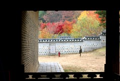 Exchange Year 16-17 (Hyung in korea) Tags: korea south corée du sud séoul seoul sookmyung womens university suwon