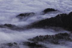 Mystic Fog in the Bavarian Mountains (Joachim Bardua (www.outdoor-lights.eu)) Tags: nikon zf bavaria sonnart18135 landscape carlzeiss availablelight