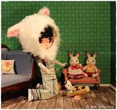 The Sylvanian Families Collection of the Girls 1of3