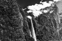 Bridalveil Fall (Priscila de Cássia) Tags: fall waterfall nikon d700 nature naturephotography yosemite yosemiteconnect yosemitenationalpark california bridalveil bridalveilfall stunning blackandwhite bw explore