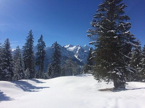 Schnee von gestern...