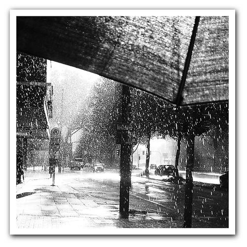 Kišni dan - Page 2 153083941_525b464e29