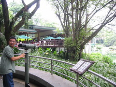NES-IN-SG-053 (batjay) Tags: park friends bird singapore batch nes dennis jurong notre dame sentosa 83 barkada dabu