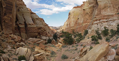 1Entrance to Cohab Canyon (Adam & Angela) Tags: utah 2006 capitolreef