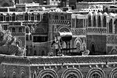 Woman hanging out washing on her roof in Sanaa - Yemen (Eric Lafforgue) Tags: republic unesco arabic arabia yemen arabian sanaa ramadan unescoworldheritage yemeni yaman arabie jemen lafforgue arabiafelix  arabieheureuse  arabianpeninsula ericlafforgue iemen lafforguemaccom mytripsmypics imen imen yemni    jemenas    wwwericlafforguecom  alyaman ericlafforguecomericlafforgue contactlafforguemaccom yemenpicture yemenpictures