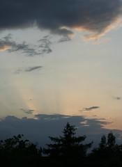 _MG_4293 (aiddy) Tags: sunset sky berkhamsted