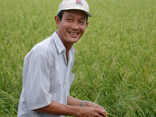 Mekong rice farmer welcomes Americans