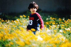 (TaMiMi Q8) Tags: boy flower smile field yellow kid bader tamimi