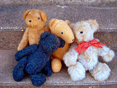 View 4 bears on Flickr