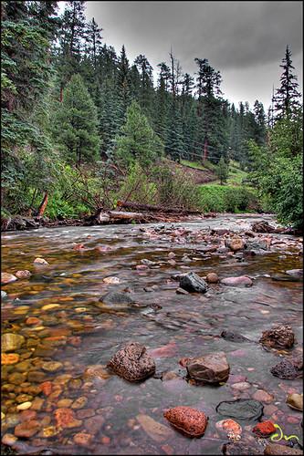 creek1-sm