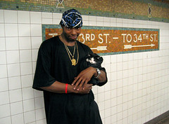 (Swatt) Tags: subway kitty homie swaddle
