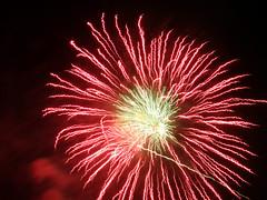 fireworks/ (genuine_tenteru) Tags: flowers light red sky night fireworks       finepixf30