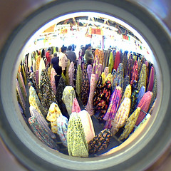 Fabric Store Ghosts, Fashion District (dogwelder) Tags: california store losangeles downtown fisheye fabric squaredcircle ghosts squircle cloth zurbulon6 peephole fashiondistrict zurbulon gatturphy