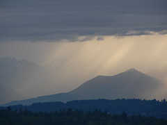 View from Phinney Ridge, Olympic Mountains, Seattle - by B Mully