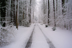 Snow Drive (garyfgarcia) Tags: snow country tracks maryland stmaryscounty 5hits abigfave