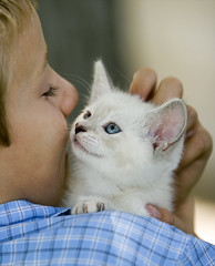 Share A Smile (Domain Barnyard) Tags: cute love cat kitten feline sweet kitty august 2006 canoneos20d awww furryfriday tingey domainbarnyard 123cats