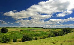 View South From Walls Hill (Scott Foy) Tags: trees sky clouds canon scotland sheep hills fields a620 renfrewshire howwood wallshill scottfoy