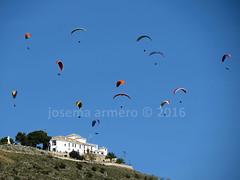 IMG_4006 marca (Josema Armero) Tags: sierradearas lucena campoleli parapente