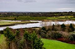 Irish Winter - early morning near banks of Fergus River, Co. Clare, Ireland (Peter Apas) Tags: ireland irishlandscape riverfergus coclare clare green pentaxk5 sigma1750f28ex