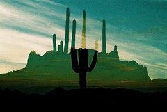 The Division Of Seeing And Feeling (Marc Rodriguez 24) Tags: rollei digibase cr200 agfa nikon f3 f3hp nikkor 50mm 14 5014 ais prime lens e6 color slide film c41 crossprocessed xpro analog analogue filmgrain sunrise saguaros superstition mountains arizona landscape doubleexposure experimental photography colorreversalfilm silhouette