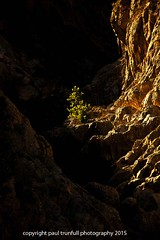 in the light1 (photoautomotive) Tags: light shadow france tree saint canon river french outside lite rocks europe shadows gorge southoffrance rockwall saintguilhemledesert 5dc 35350l