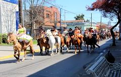 FIESTAS PATRIAS - LINARES (Pablo C.M || BANCOIMAGENES.CL) Tags: chile ciudad linares campo huasos fiestaspatrias chilenidad regindelmaule