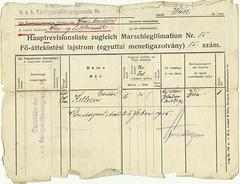 301 - Army Document (fr) (dezsokellner) Tags: army hungary 1915 kuk kellner trebinje dezso