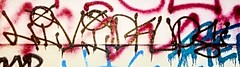 Went wild in the bedroom (livtilimdead) Tags: graffiti throwup handstyle dcups