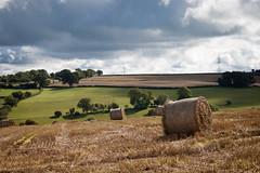 Herefordshire landscape 02 sep 15 (Shaun the grime lover) Tags: field landscape farm harvest straw herefordshire bales stubble broadoak