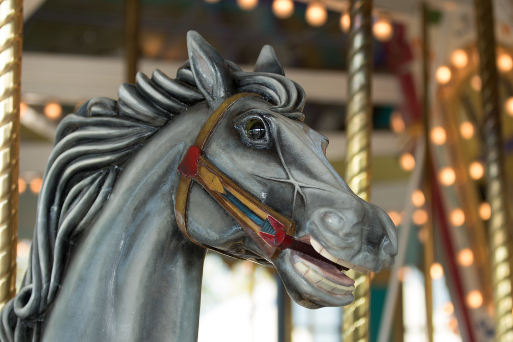 The World's Best Photos of carousel and carved - Flickr Hive