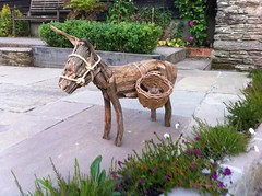 """Little donkey • <a style=""""font-size:0.8em;"""" href=""""http://www.flickr.com/photos/28678584@N00/22454584739/"""" target=""""_blank"""">View on Flickr</a>"""