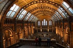 natural history museum (Giramund) Tags: london history museum natural nhm