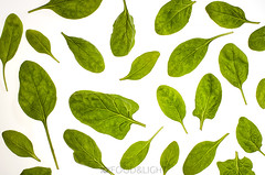 spinach leaves (Food Photography Studio) Tags: green leaves healthy pattern vegetable fresh simple onwhite spinach enlightened unprocessed