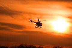 Hellicopter (Daveyal_photostream) Tags: sunset sky sun nature beautiful beauty chopper nikon outdoor treetops helicopter sunsetting whirlybird d600 nikor mycamerabag mygearandme meandmygear coatesvilleairport