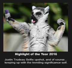 Selfie effect (Channah07) Tags: justintrudeau animal selfie highlight year2016 politics upshot lemur