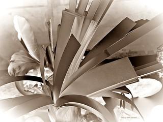 paper [3]