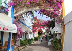 Colourful street (Graham`s pics) Tags: street colour colourful flower flowers holiday vacation travel tourism puertodemogán canaryislands grancanaria puertomogan