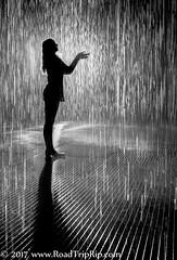 2017-1 - LACMA_0125 - final (Road Trip Rip) Tags: rain rainroom lacma losangeles california blackandwhite female form silhouette backlight backlit