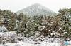 0113 IMG_6935 (JRmanNn) Tags: lovellcanyon snowfall mountain trees lasvegas