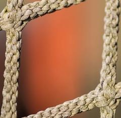 Hockey Net (NedraI) Tags: hockey net square knot rope spring winterbackyard knots orange macro hockeynet thespaceinbetween