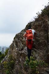 DSC_8456 (sch0705) Tags: hk hiking kowloonpeak sunsetridge kowloonpeakpassage