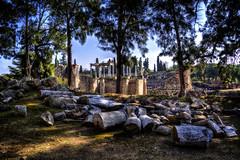 Merida - Teatro Romano (mgarciac1965) Tags: ruinas teatro anfiteatro historia merida badajoz españa spain exterior arbol piedra nikond5200