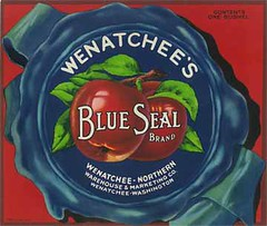 """Blue Seal • <a style=""""font-size:0.8em;"""" href=""""http://www.flickr.com/photos/136320455@N08/21283891098/"""" target=""""_blank"""">View on Flickr</a>"""