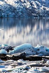 Fjallsrln (MeganSpooner) Tags: lake reflection ice iceland lagoon glacier iceberg icy icebergs fjallsarlon fjallsrln