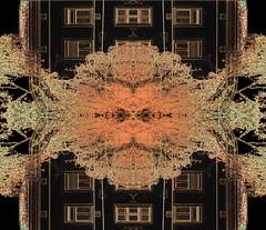 Tree at the old brick wall besides the new house - Building Site Baustelle Construction site Lichtgasse Gasgasse Zwlfergasse Leydoltgasse bahnhofsnhe Westbahnhof view blick Gleis 1 Bahnsteig 1 (archive_diary) Tags: vienna wien tree brick wall austria mirror abend design sketch sterreich view spiegel diary dream sketchbook baustelle unterwegs ornament memory birch monochrom xv weaver requiem constructionsite nonsense buildingsite weave tagebuch baum blick bau weber neu mauer birke erinnerung 1150 rundgang abendstimmung neuer mariahilf traum analogie ziegel beobachtung entwurf westbahnhof bearbeitung skizze sewingpattern gleis1 weben skizzenbuch lieblingsfarbe schnittmuster gasgasse bahnhofsnhe leydoltgasse bahnsteig1 15bezirk zwlfergasse photographicsketch prokrustes musterbogen teppichweber photographischeskizze neuest lichtgasse einhausbauen