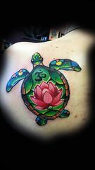 turtle final