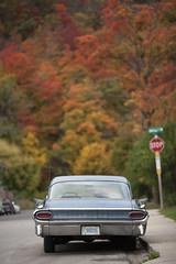 Pontiac in Dundas (Raf Ferreira) Tags: old autumn ontario canada fall colors car vintage cores colours hamilton carro pontiac rafael dundas leafs outono ferreira peixoto